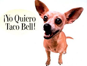 "Taco bell chihuahua.""Yo Quiero Taco Bell"" by Taco Bell -- A campaign centering on the Taco Bell Chihuahua, which became a pop culture phenomenon"