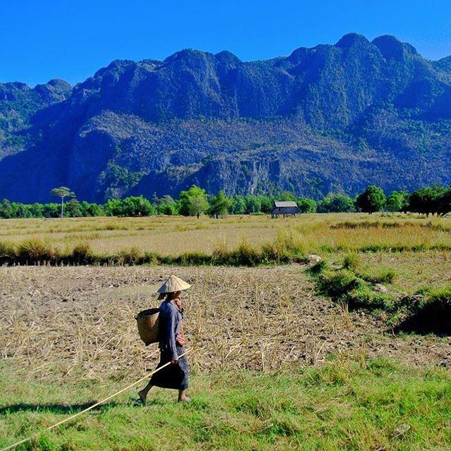 Beautiful escapes all over the place during the Thakhek Loop, Middle Laos  . . . #Laos #thakhekloop #travelasia #asiatravel #asiatrip #exploreasia #goasean #southeastasia  #choosemountains #everytrailconnect #takeahike #hikelife #wildernessbabes #womenwhohike  #andsheisdopetoo #outdoorwomen # mountaingirls #intonature #goneoutdoors #greettheoutdoors #modernoutdoors #offthebeatentrack #middleofnowhere #everytrailconnects #goexplore #areyouawake #lifeyouradventure