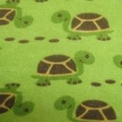 Joustofrotee, kilpikonnat
