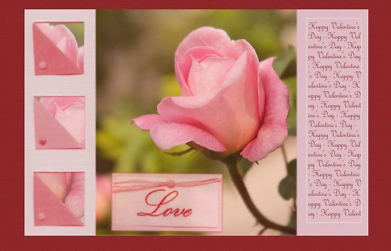 Happy Valentine's day - Pink rose bud - card by steppeland Price: €1.96 - Check discounts!