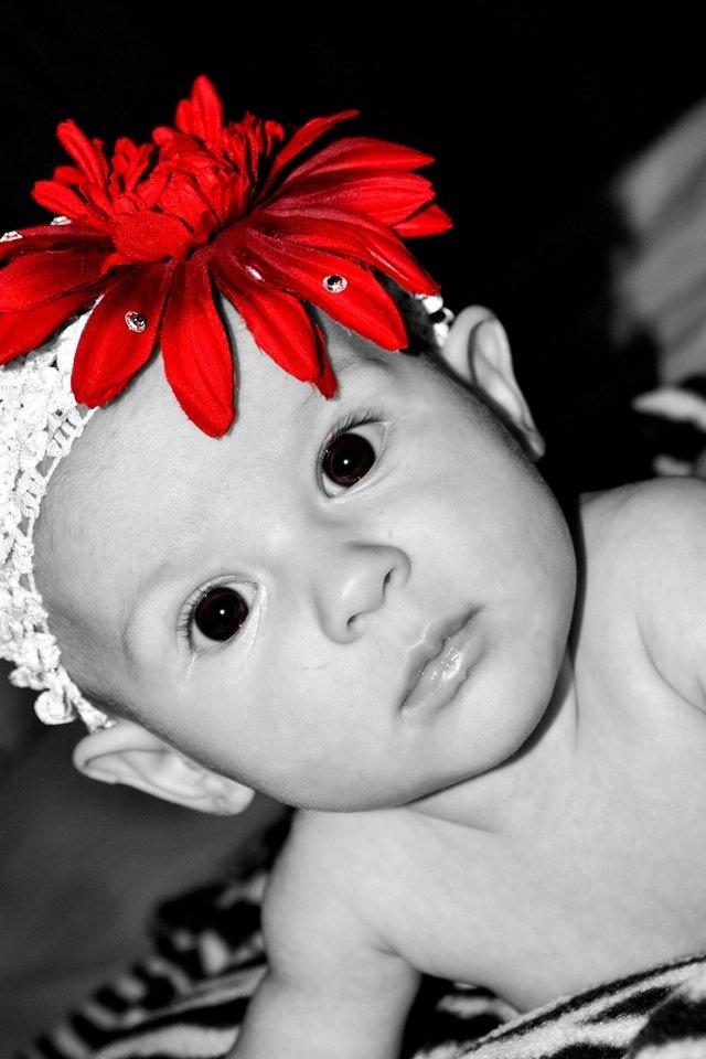1000 images about color splash red on pinterest red - Tableau noir et blanc avec touche de couleur ...
