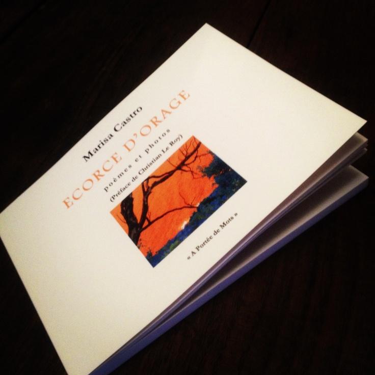 """""""Ecorce d'orage"""" recueil de poésie contemporaine de Marisa Castro publié en 2009 - France -"""