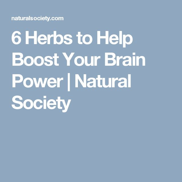 6 Herbs to Help Boost Your Brain Power | Natural Society