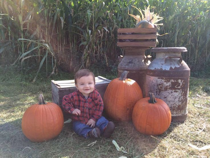 Lachlan at the pumpkin patch