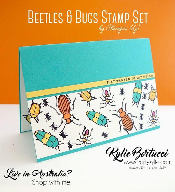 Beetles & Bugs