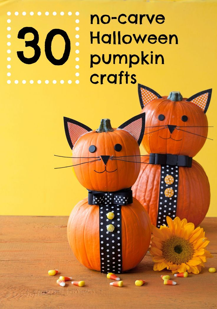 Best 25 cat pumpkin ideas on pinterest cat pumpkin for Simple pumpkin centerpieces
