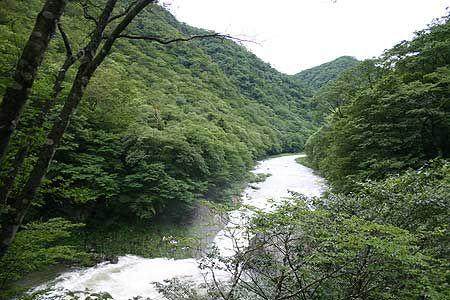 車を降りると、冷たい山の空気に包まれた。滝の轟音。全身が心地良さに満たされる。[2007/7 塩原渓谷箒川布滝(栃木県)]© 2010 風旅記(M.M.) 風旅記以外への転載はできません...