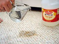 Good to keep for when you may need it - clean up pet pee stains, vinegar, peroxide and blue dawn. With Rug Doctor - lots of vinegar with water, 1 cup peroxide, 1 tsp blue dawn. Throw in gain for scent boost. After mostly dry, sprinkle baking soda, let dry and vacuum a few times. Good to know!