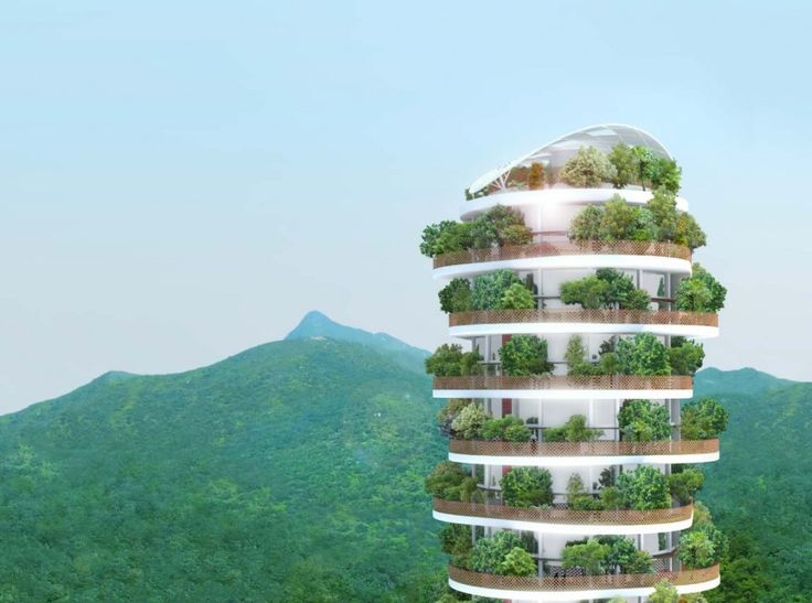 The Canopy Tower Apartments Envelope Tenants in Nature