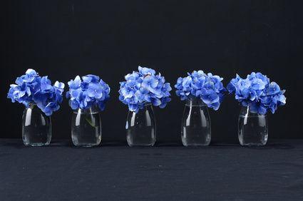 a row of hydrangea flower in vase on black zuk nftige. Black Bedroom Furniture Sets. Home Design Ideas