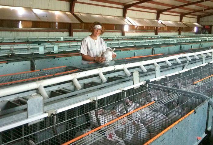 La Fundación de Estudios Rurales premia a la cunicultora María Jesús Martín por su lucha por los precios justos | Infonuba - Noticias de Huelva, El Tiempo, Información, Eventos