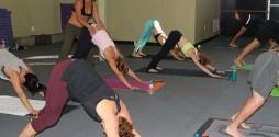 Melt Ladera Hot Yoga is a highly regarded hot yoga studio. It's located in Ladera Ranch, California and services Ladera Ranch, Mission Viejo, Rancho Santa Margarita, Laguna Niguel and San Juan Capistrano!