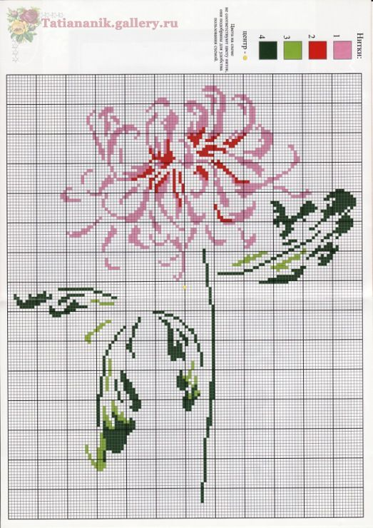 Very pretty chrysanthemum cross stitch
