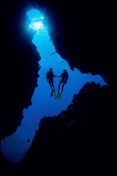 Majestic Diving Photography that will Give You Scuba Thirst This is a really nice photo of a couple who are diving together.