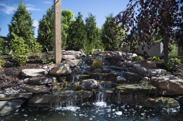 Best pond store- for aquarium plants and fish supplies. For more information visit on this website http://pondrockshop.com