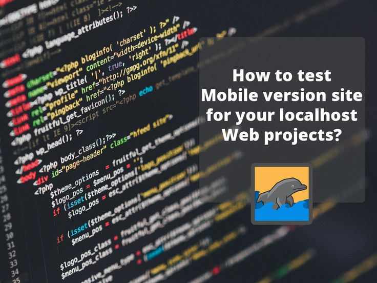 How to test mobile version site for your localhost web projects?