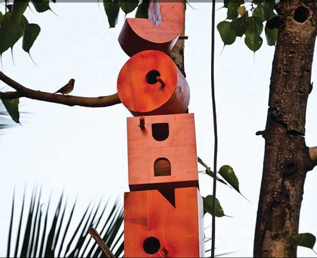 unusual birdhouses