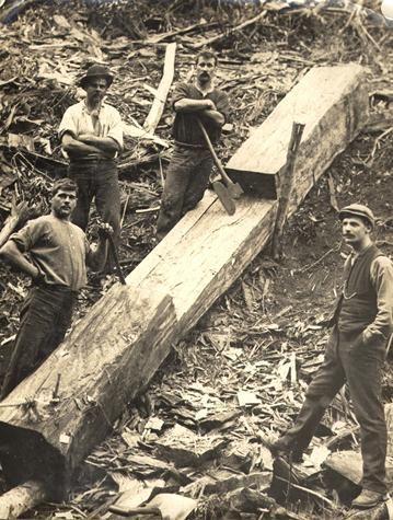 Loggers at Walhalla Victoria 1905-1920 Museum Victoria, Australia.George Fletcher built sawmill in Walhalla.1940's