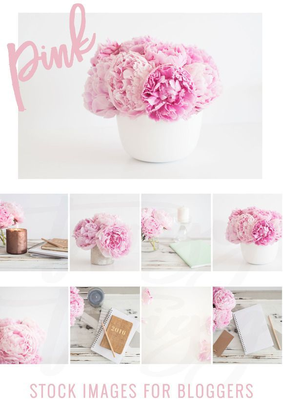 Peony Stock Images by TwigyPosts on /creativemarket/
