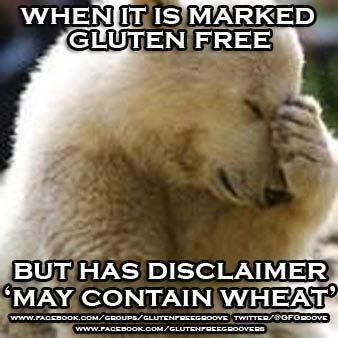 e7e057fca22e2102a17e4ea3384ba59f 58 best gluten free fun images on pinterest gluten free bakery