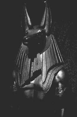 The god Anubis