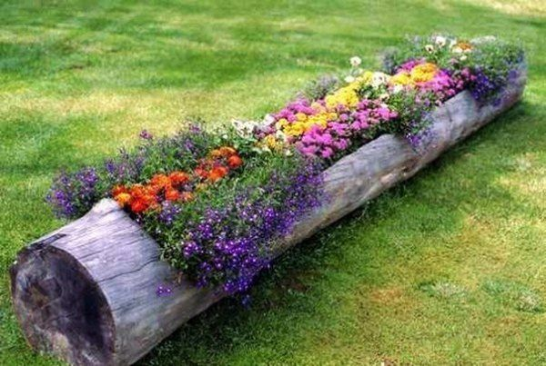 hollowed-log-planter- This is really a planter that can be ordered. I would recycle/reuse and get an old log instead.