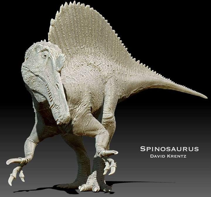 David Krentz Art on FB | Spinosaurus | https://www.facebook.com/davidkrentzart. #Dinosaur #Spinosaurus