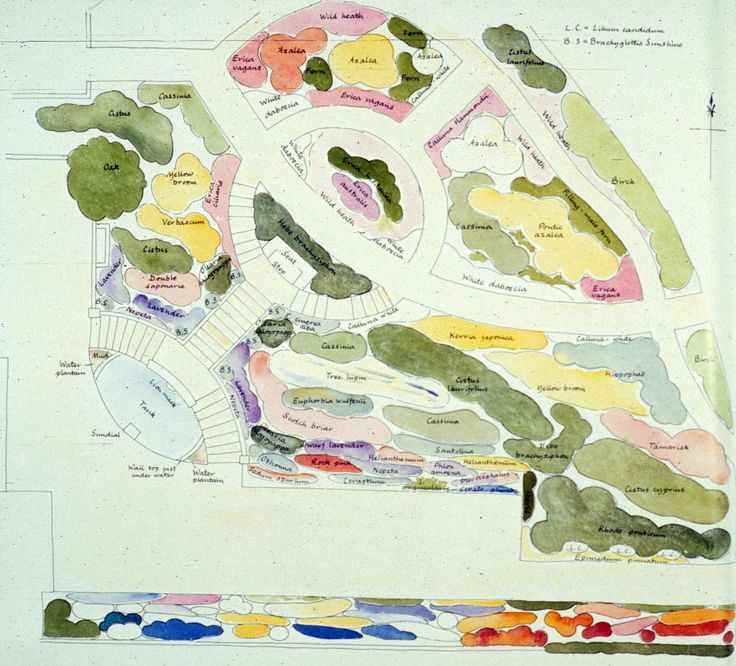 Gertrude Jekyll Watercolor Planting Plan Small Garden