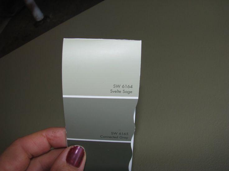 Behr svelte sage paint colors home exterior pinterest for Best all over paint color