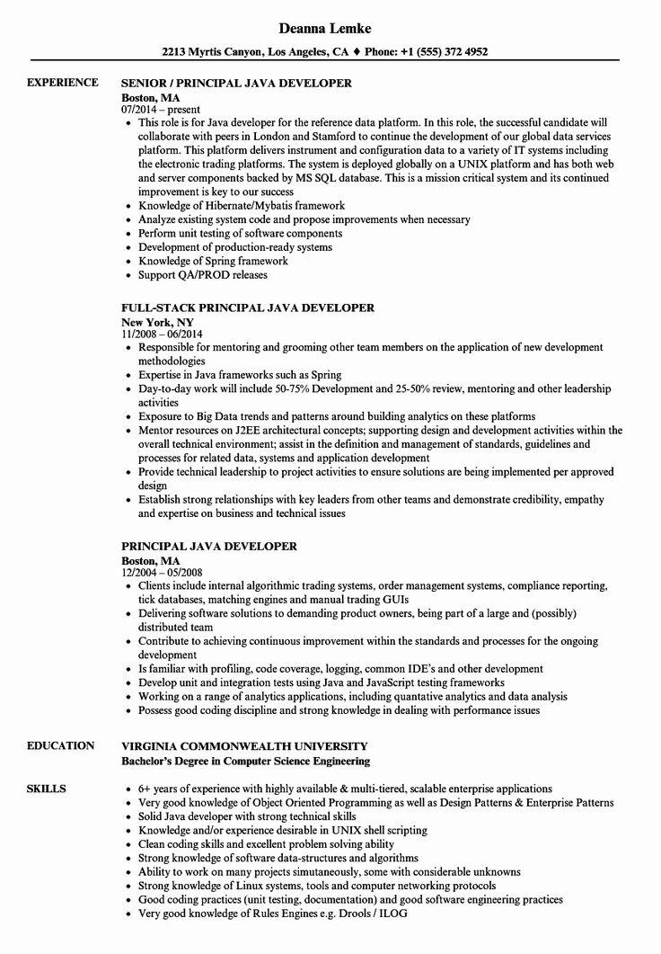 23 Junior Full Stack Developer Resume Example in 2020