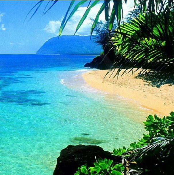 Another place I would love to go is to Hawaii.  Hawaii is so different from the other states and I think it would be interesting to see what it would be like to live in Hawaii.
