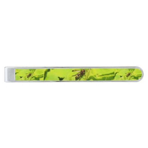 Vespidea paper/Potter wasp