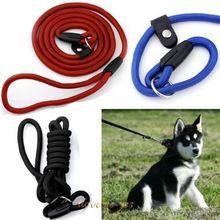 Pre psa Nylon Rope tréning Vodítko Slip Lead popruh Nastaviteľný trakcie Collar (Čína (pevninská časť))