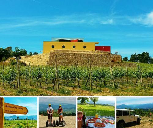 """A Quinta de Santa Cristina foi distinguida pela associação internacional """"Great Wine Capitals"""", com o prémio """"Best of Wine Tourism 2017"""", a nível nacional, na categoria Experiências Inovadoras de Enoturismo."""