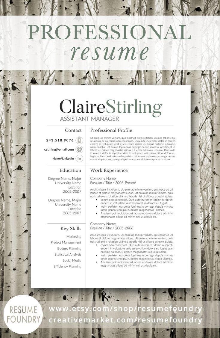 17 best ideas about professional resume design cv professional resume design that organizes your information so that it is eye catching and easy