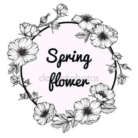 Descargar - Marco de flor color de rosa salvaje dibujo. Dibujo y dibujo con línea blanco y negro-arte — Ilustración de Stock #169911448