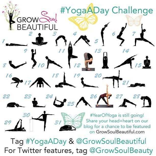 Beginner yoga poses to try (http://instagram.com/growsoulbeautiful)