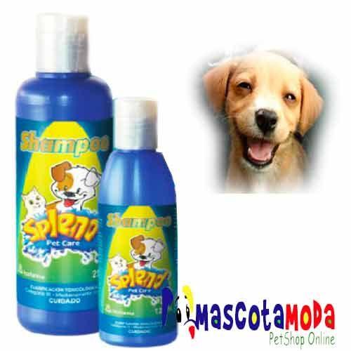 Shampoo antipulgas para perro