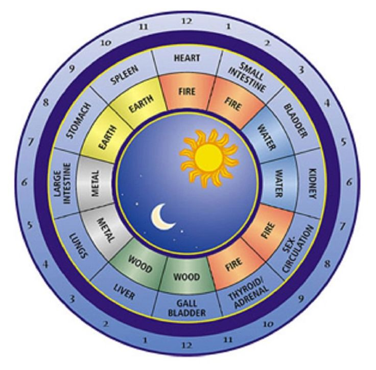 The Chinese biological clock shows the intervals in which the energy circulates through the parts of our body, and every two hours, it is strongest in a particular area of our body. Then in that part of the body, if there is any problem, the symptoms at that time are the most... #chineseclock