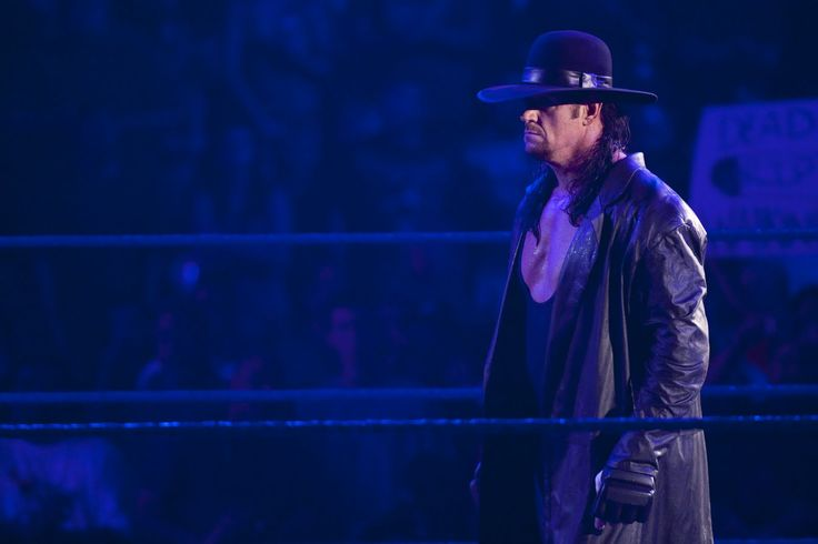 HALL OF FAME WWE: UNDERTAKER