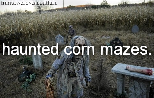 haunted corn mazes!