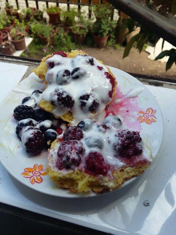 Pan dulce + berries + merengue