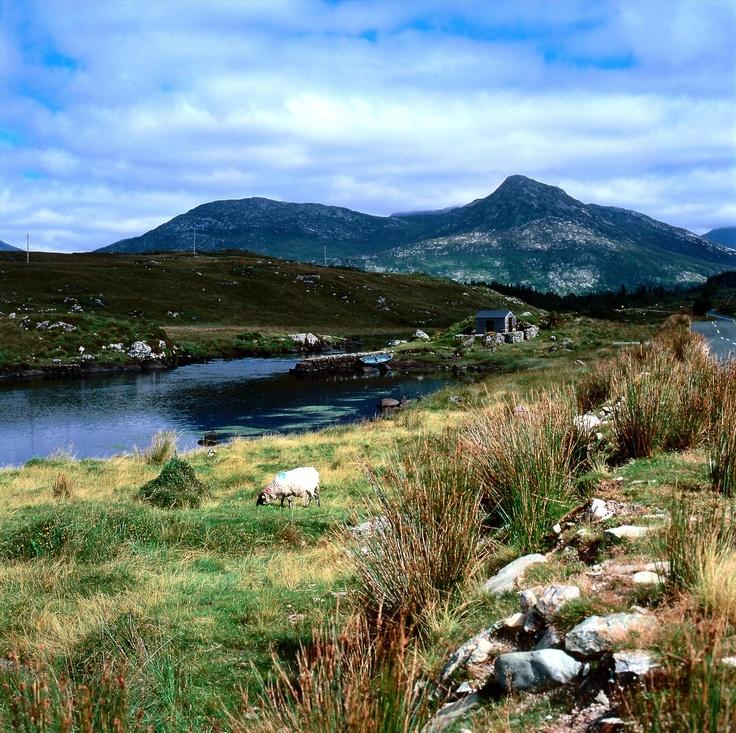 Connemara, Co. Galway (Ierland)