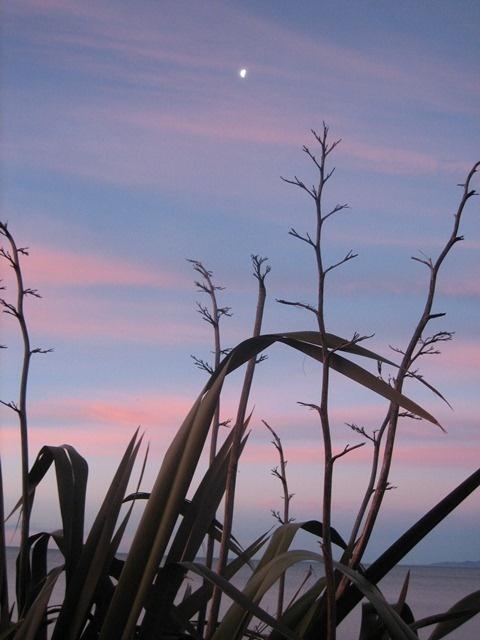 Ruby Bay, sunset series...