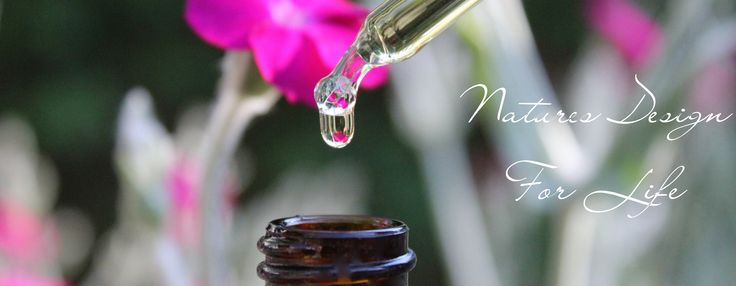 Natural Vibrational Remedies crafted from the world leading range of First Light Flower Essences of New Zealand. Now available in Europe!