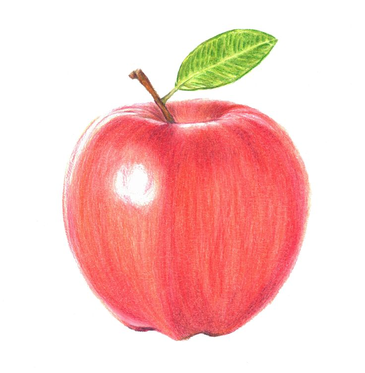 A is for Apple  - illustrating my way through the alphabet one letter at a time. Hopefully people will want to use them for name prints, decoration, stickers etc www.etsy.com/shop/damiansart