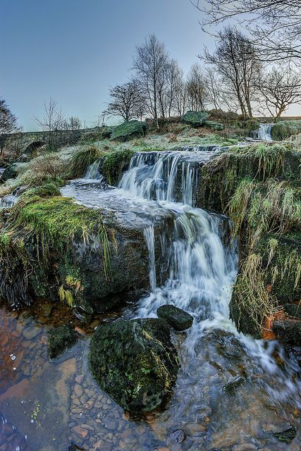 Fyling Dale Moor, North Yorkshire, England.  Photo by Lance Garrard.