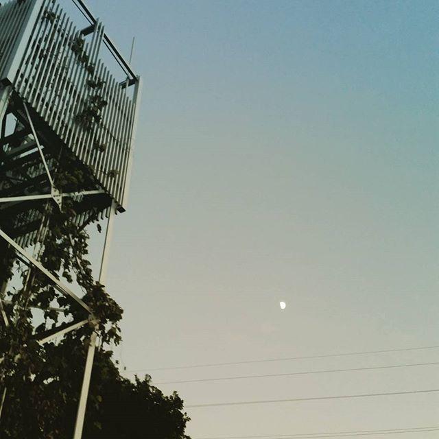 Instagram【candy_raychell】さんの写真をピンしています。 《月と鉄塔  #夕焼け#綺麗#mood#insta#instamood #instagood #instapic #instagallery #sunset #japan #yokohama #あなたと見たい空 #空#sky #selfshot#portrait #selfportrait#癒し#fun#誰かに見せたい空 #あなたに見せたい空#byebye#空が好きな人と繋がりたい #夜景#イマソラ #空が好き#月#鉄塔》
