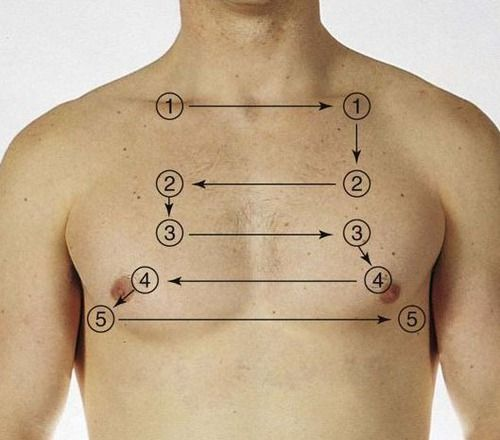 Lungs Auscultation- front!