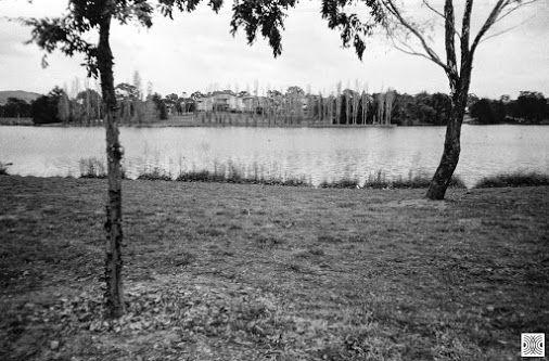 My Canberra - on film mainly Gungahlin, Yarrabi Pond, back in 2015  Olympus XA, Kodak T-Max 100  www.pavelvrzala.com  #Australia #Canberra #Gungahlin #Kodak #TMax100 #film #Olympus #XA